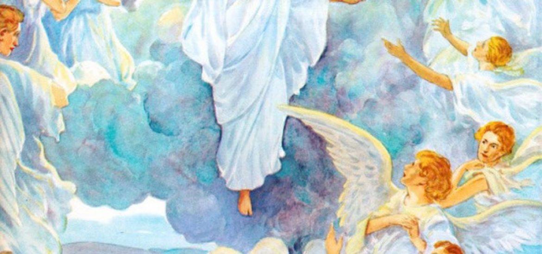 Jesus Christ: Every Knee Shall Bow